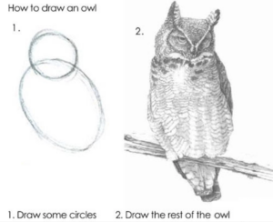 Meme showing on the left a circle and larger oval, and on the right a well-drawn, realistically-shaded owl. Text reads 1. Draw some circles 2. Draw the rest of the owl